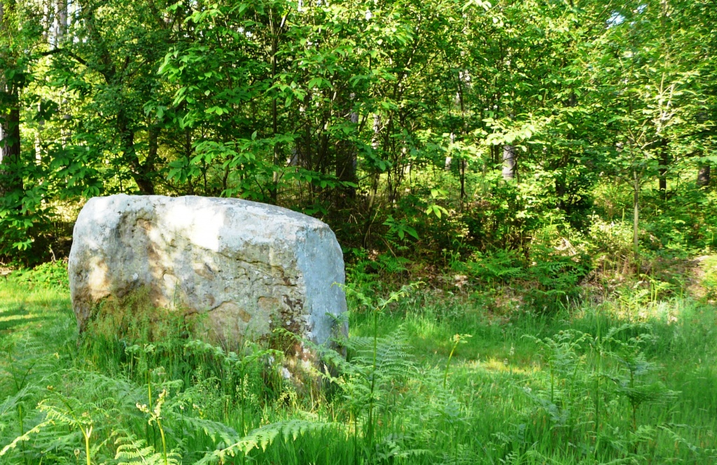 pierre 3