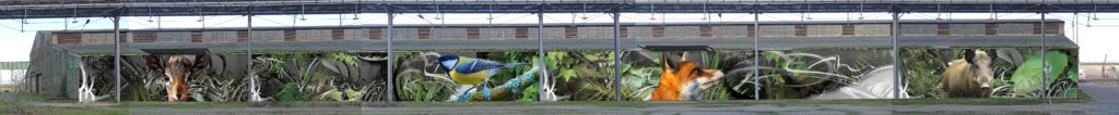 street art Ecloz